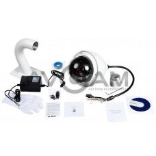 Поворотная IP видеокамера RVi-IPC52Z30-A1-PRO